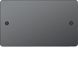 WFP2BN Twin Blank Plate Black Nickel